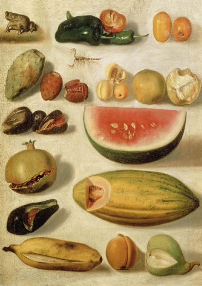 Bustos, Hermenegildo: Still Life with Fruit (with Scorpion and Frog). Fine Art Print/Poster. Sizes: A4/A3/A2/A1 (004207)